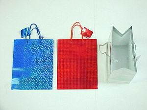 HOLOGRAM GIFT BAG-MEDIUM SIZE