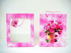 Pink Window Gift Bag - 10 x 8 x 6 inches