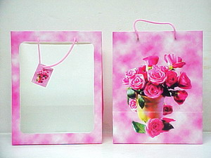 Pink Window Gift Bag - 14 x 11 x 8 inches