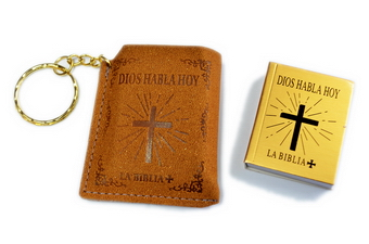 SPANISH SUEDE POUCH BIBLE K.C.