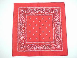 PAISLEY BANDANNA-RED COLOR
