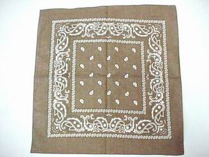 PAISLEY BANDANNA-BROWN COLOR