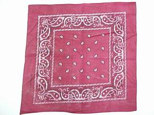 PAISLEY BANDANNA-WINE COLOR